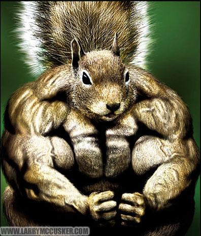 best anabolic steroid pills